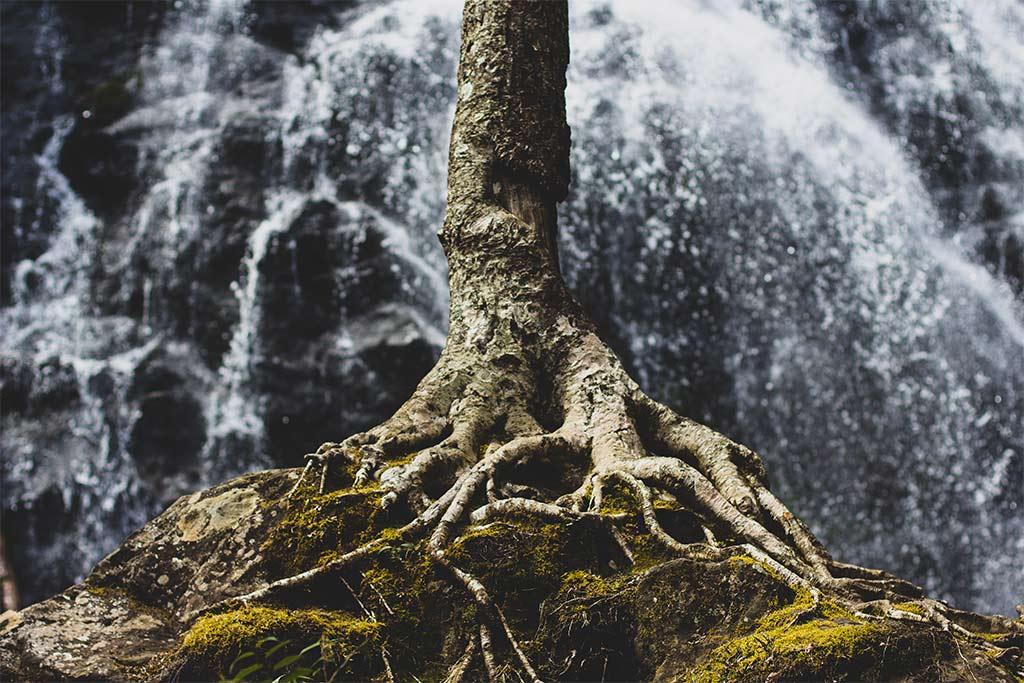 Overcoming Sin: Dig Deep